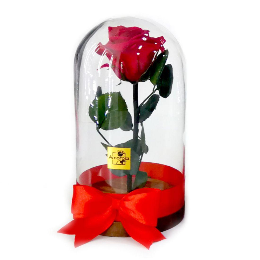 Örökrózsa üvegburában az Amorosa-tól (1 szálas)